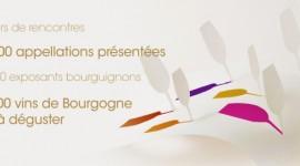 Grands jour de Bourgogne mars 2010-réalisation Agence Grand Pavois