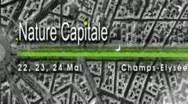 Capture245