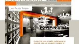 Prix du meilleur site Vitrine : Cavereseda.fr Commerce de Cave à vins et alcools – M. Jérôme LIMONET Conception : Minimal Studio – M. Arnaud CLERGUE