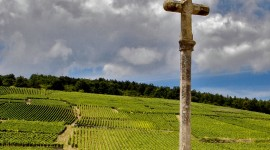 Cross Guarding a Burgundian Vineyard par Michael Neil O'Donnell cc:by-nc-nd/2.0