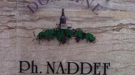 Domaine Naddef àFixin