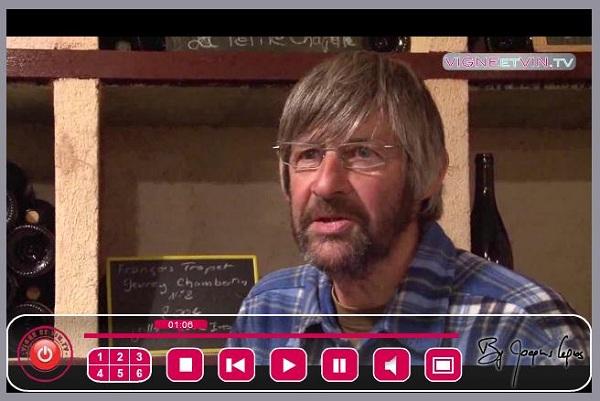 vin tv live