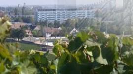 Hôpital de Beaune