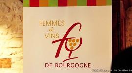 Visuel Femmes et Vins de Bourgogne par Aurélien Ibanez