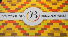 Vins de Bourgogne à Vinexpo 2011