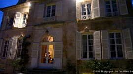 Domaine Chandon de Briailles par Aurélien Ibanez