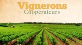 Vignerons coopérateurs