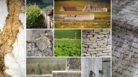 Les climats du vignoble de Bourgogne par Armelle, Jean-Louis Bernuy et Michel Joly