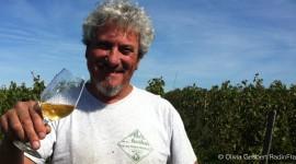 Le viticulteur Dominique Derain Tous droits réservés Olivia Gesbert Radiofrance