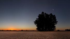 Moon & Sun par lrargerich CC : by-nc/2.0/