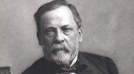 Portrait of Louis Pasteur par Felix Nadar Copied from Portraits from the Dibner Library of the History of Science and Technology