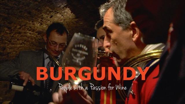 Burgundy Final Large Logo Composite copy 2