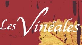affiche vineales 2013