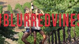 Blurred Vines